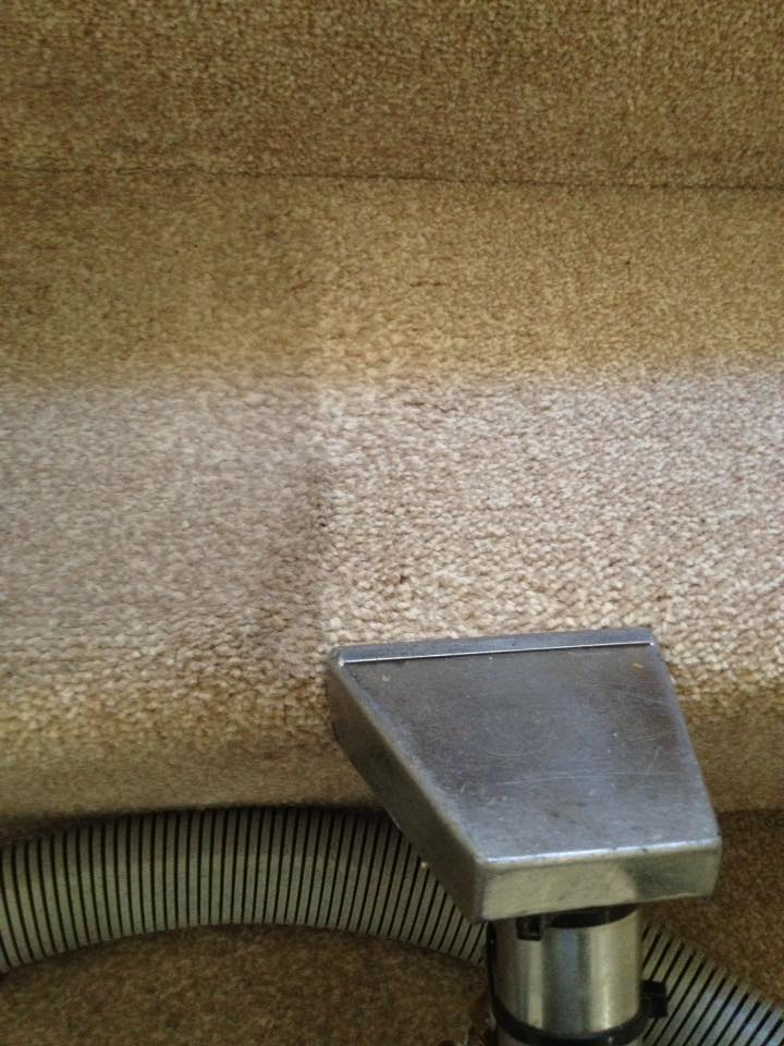 carpet stairs fawn